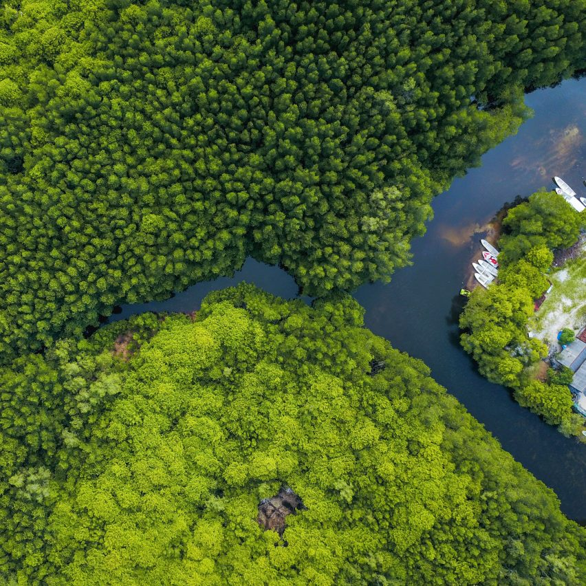 An aerial view of a tropical forest in Indonesia