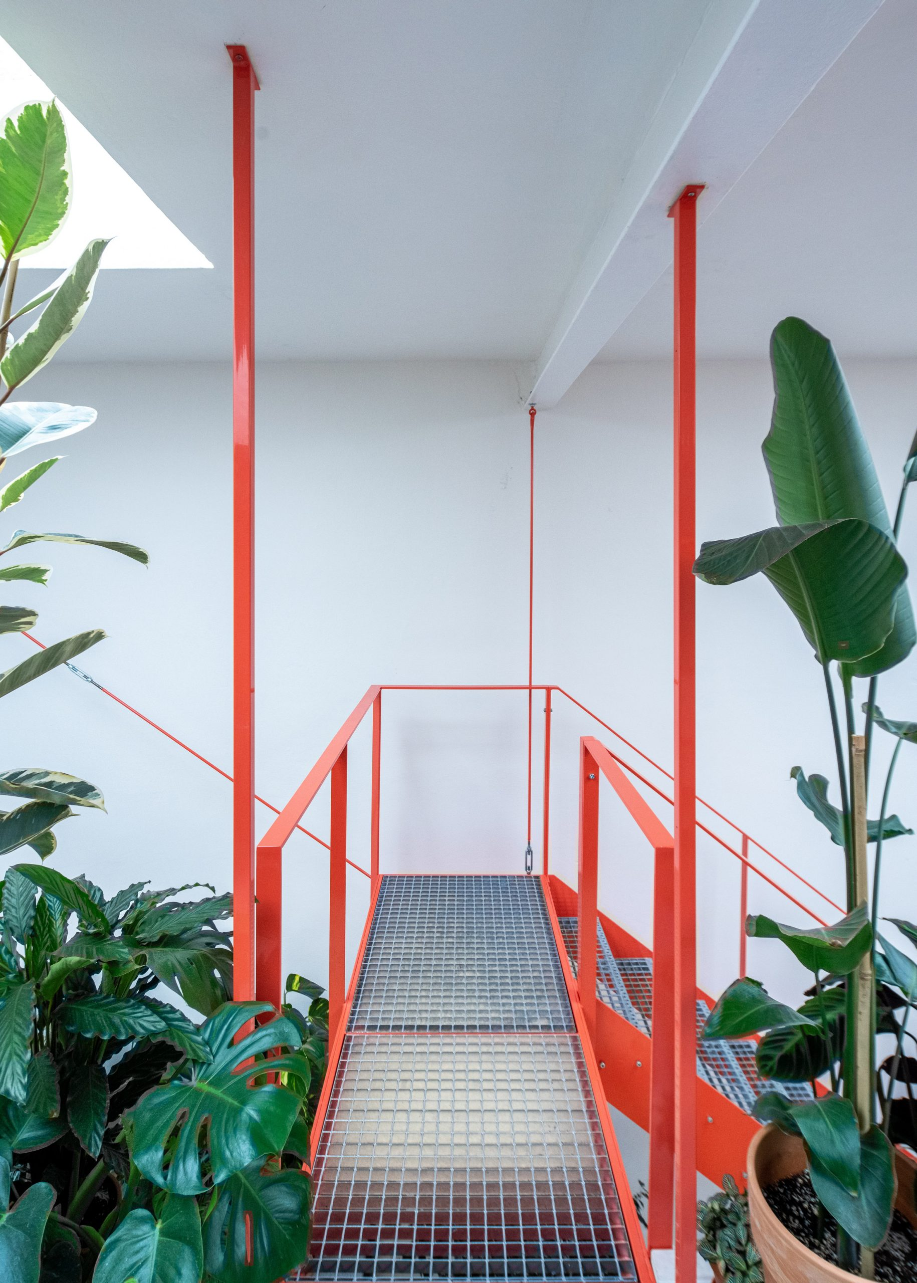 Metal tangerine stairs and plants in cafe designed by Kogaa