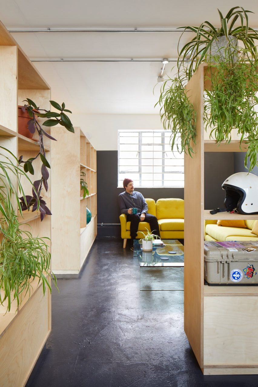 A studio lounge with plywood bookcases and plants