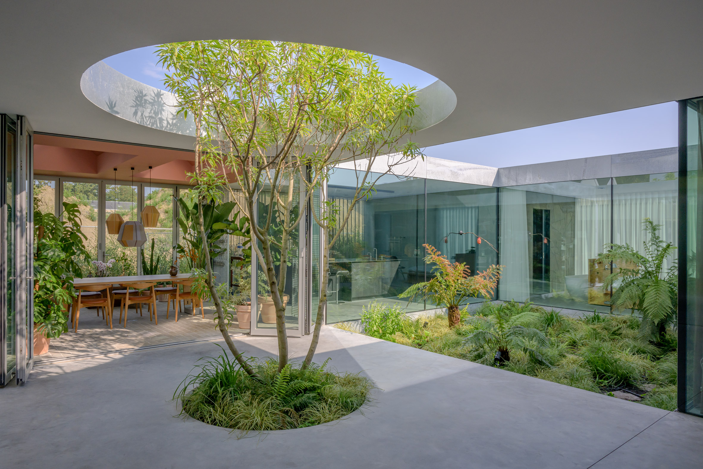 A sheltered courtyard with a tree inside a Dutch house