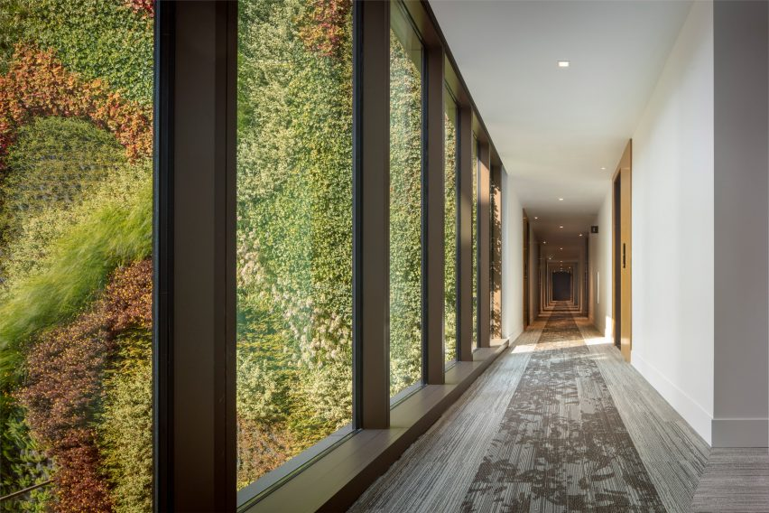 Green wall viewed from inside