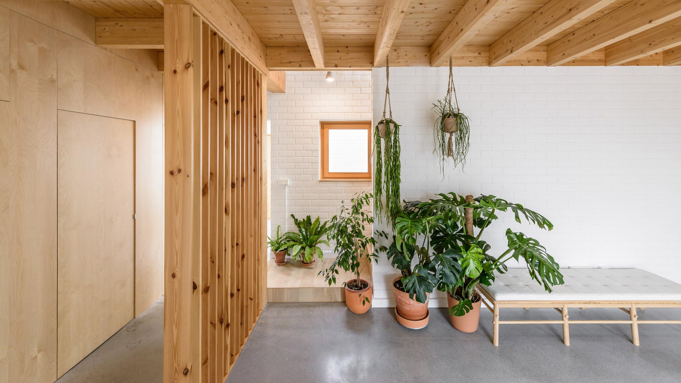 Plant-filled interior