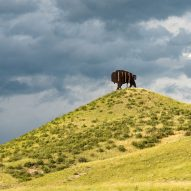 A buffalo hiding cell tower technology