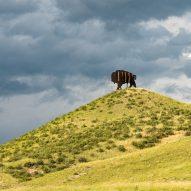 A buffalo hiding cell tower technology