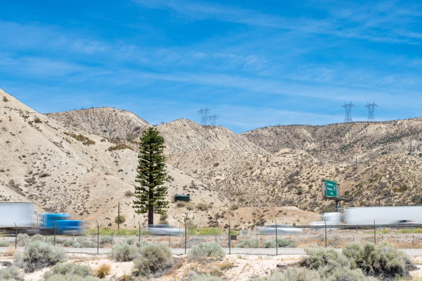 Pine tree cell tower in a desert