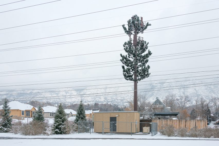 Fake pine tree in the American West