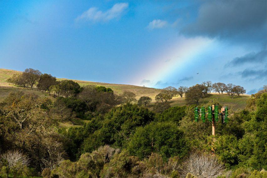 Rainbow over fake palm tree
