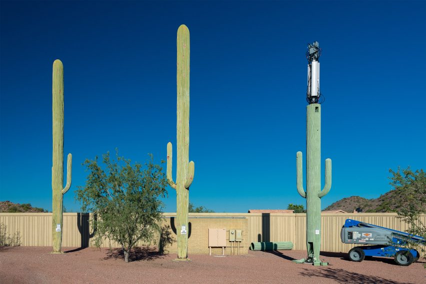 Saguaro cacti hiding cell towers