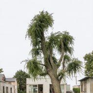 The exterior and garden of House C-VL in Belgium