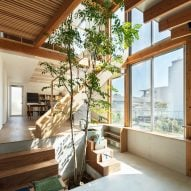Yukawa Design Lab's Margin House is built around a multipurpose atrium with a tree
