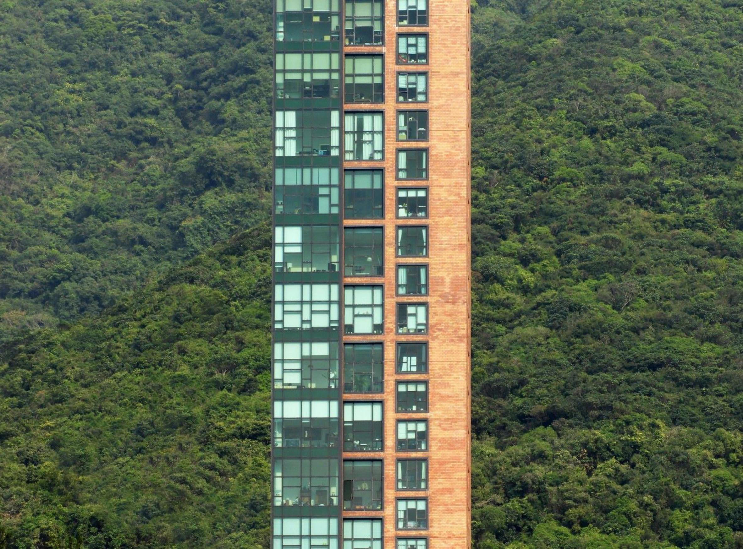 Green Living taken in Hong Kong by Nikola Olic