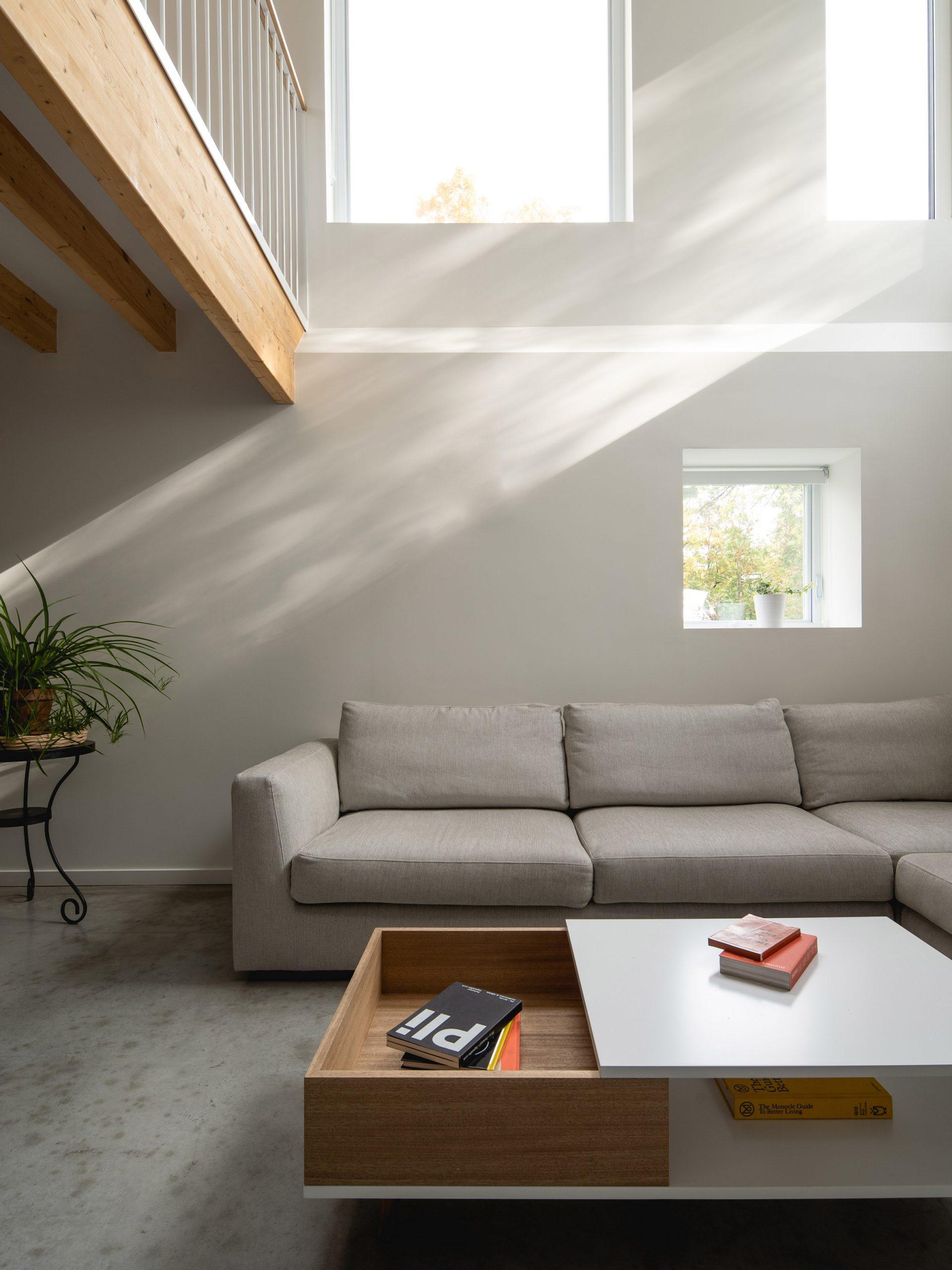 Park Ex House has a light-filled basement