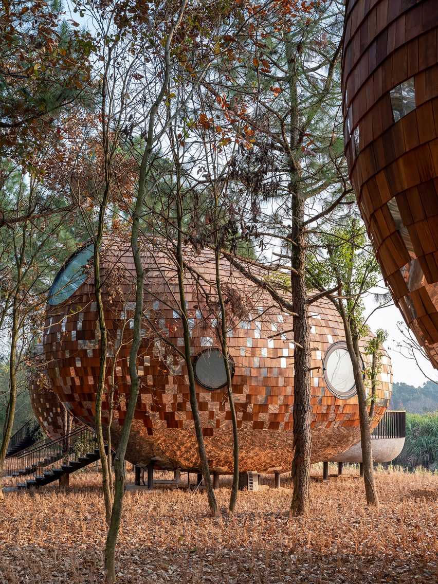 An woodland cabin clad in shingles and mirrors