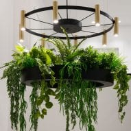 Chandelier with planter