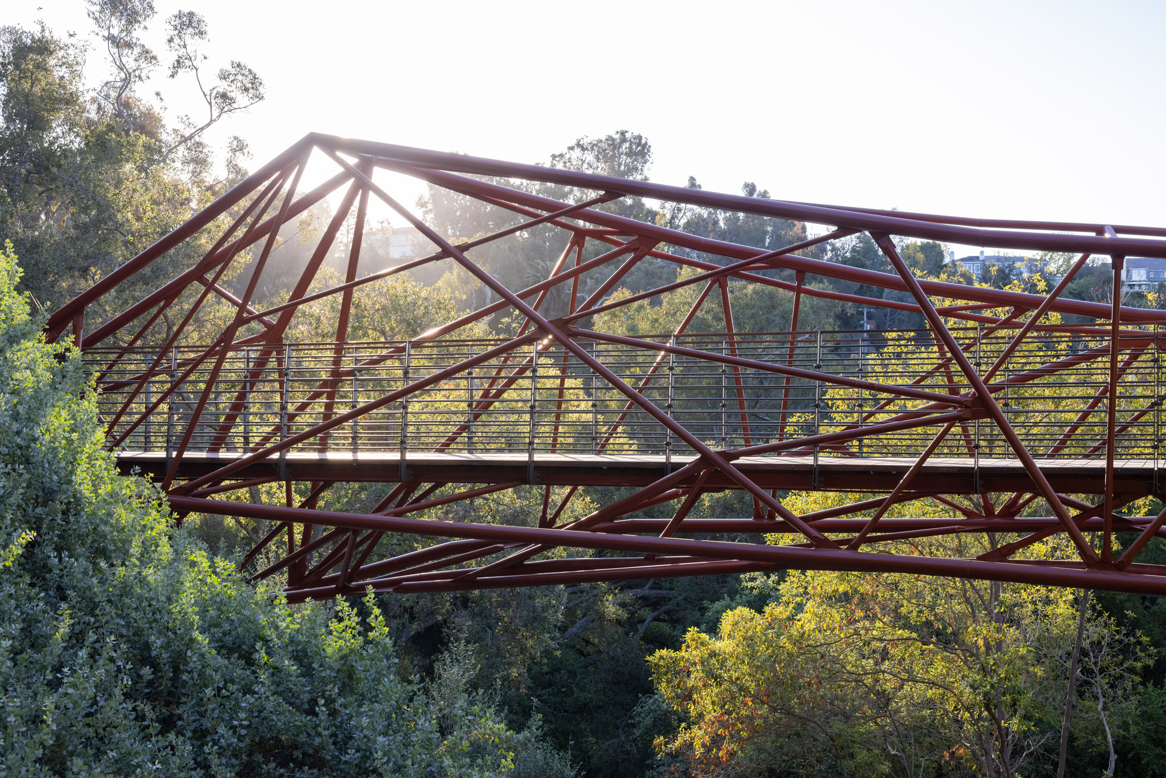 Web-like layered complex steel structure
