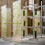 Bit.Bio.Bot exhibition shows how algae can be used as air purifiers and protein source