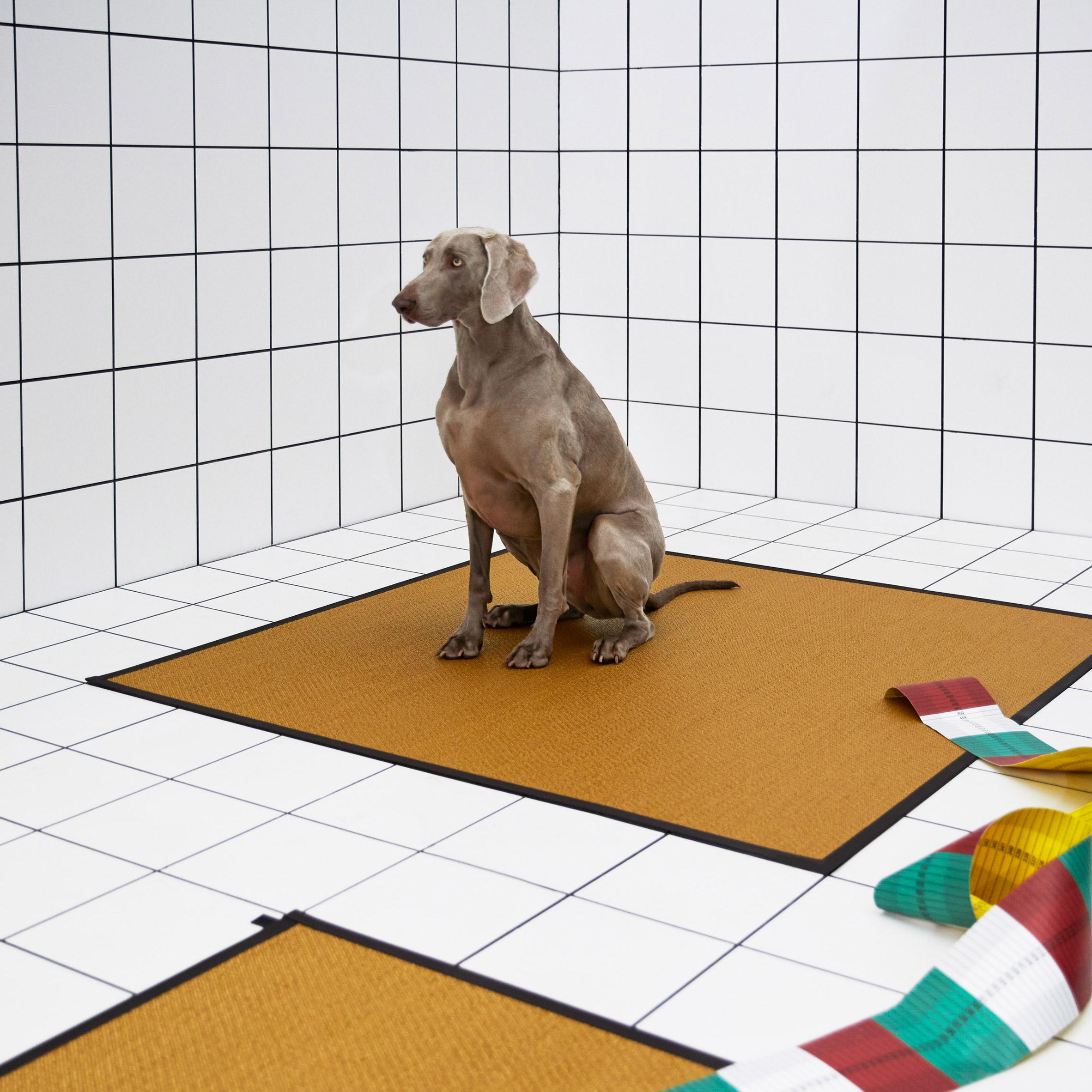 A square mustard-coloured Bolon R rug by Bolon