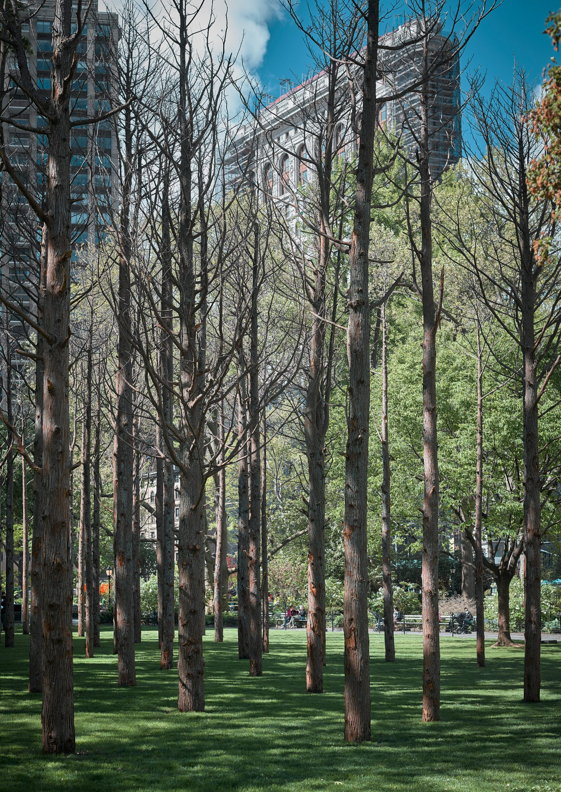 Maya Lin worked with the Madison Square Park Conservancy on the project