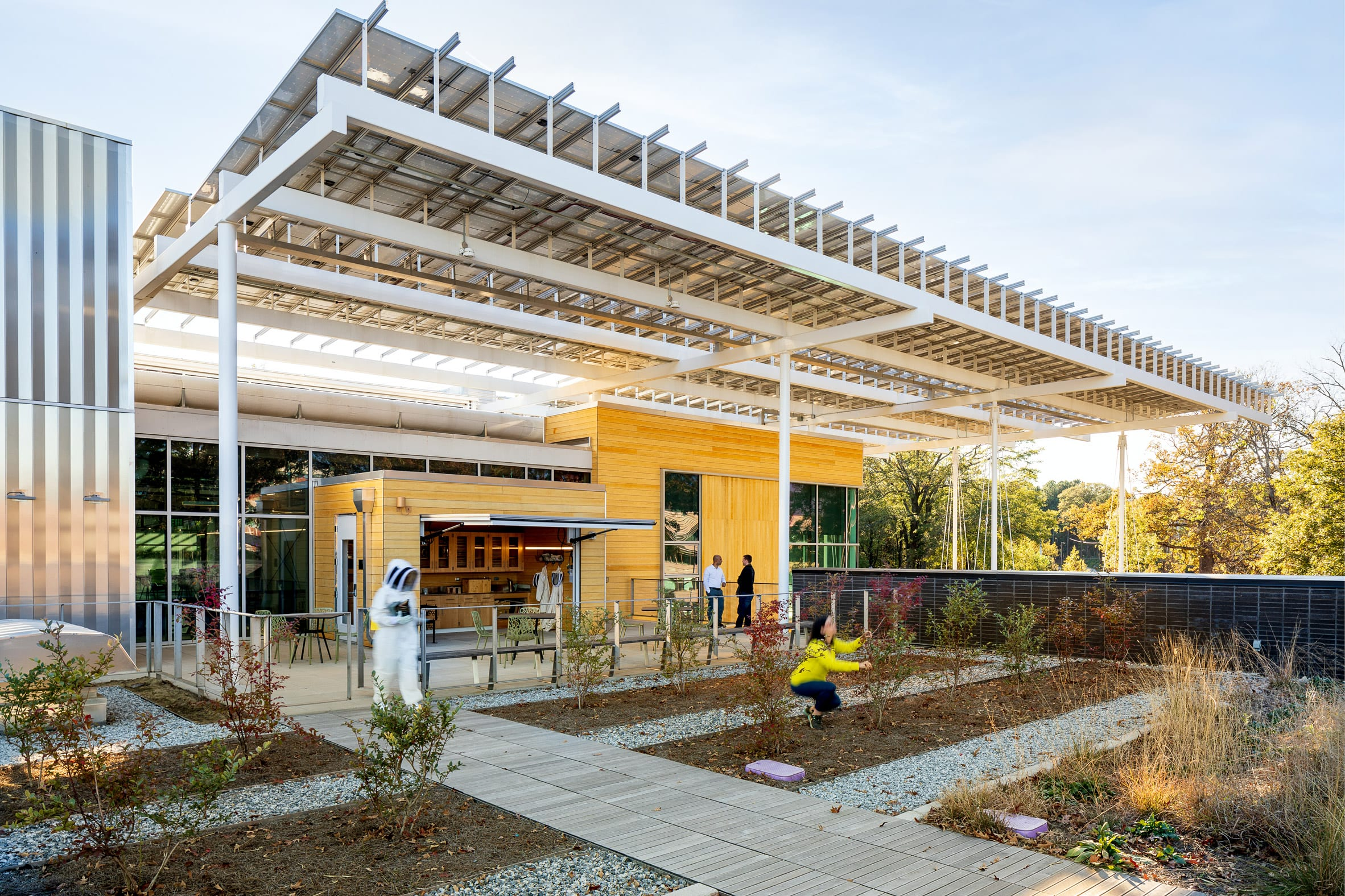 The Kendeda Building has a rooftop garden for beekeeping