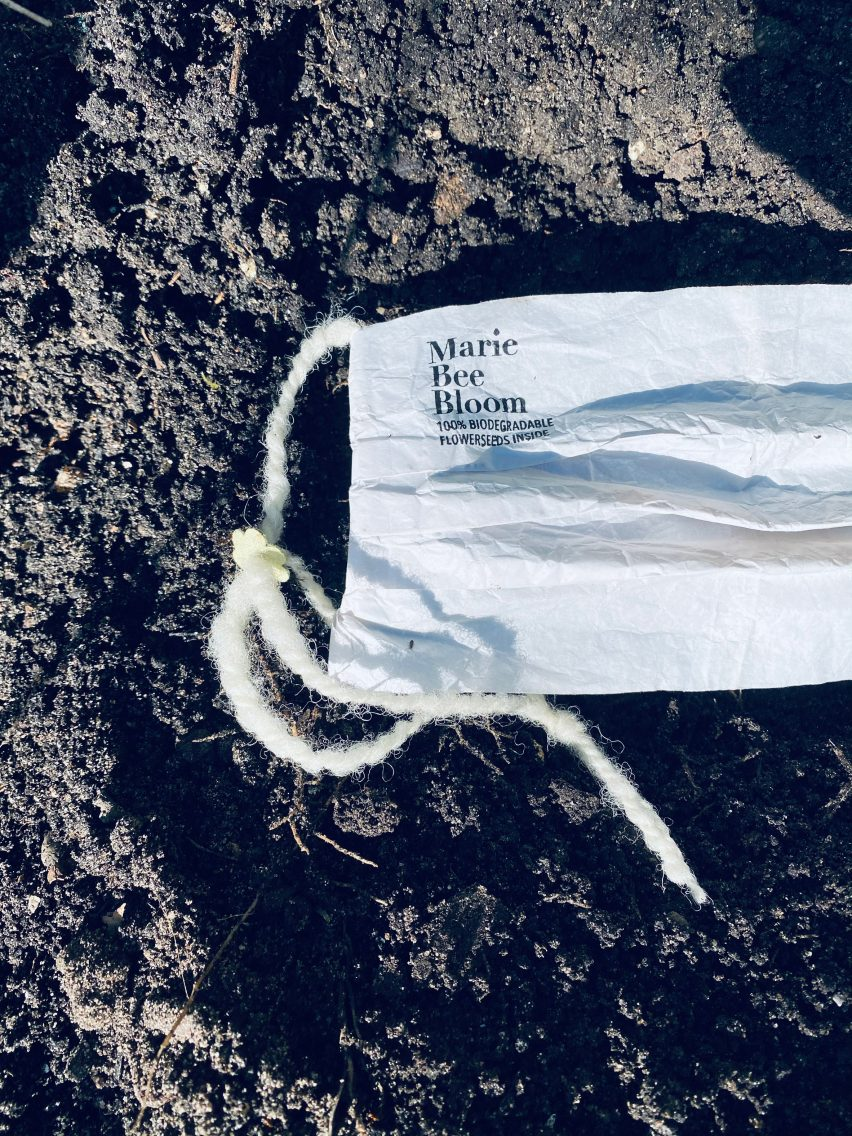 Biodegradable Marie Bee Bloom face mask in soil
