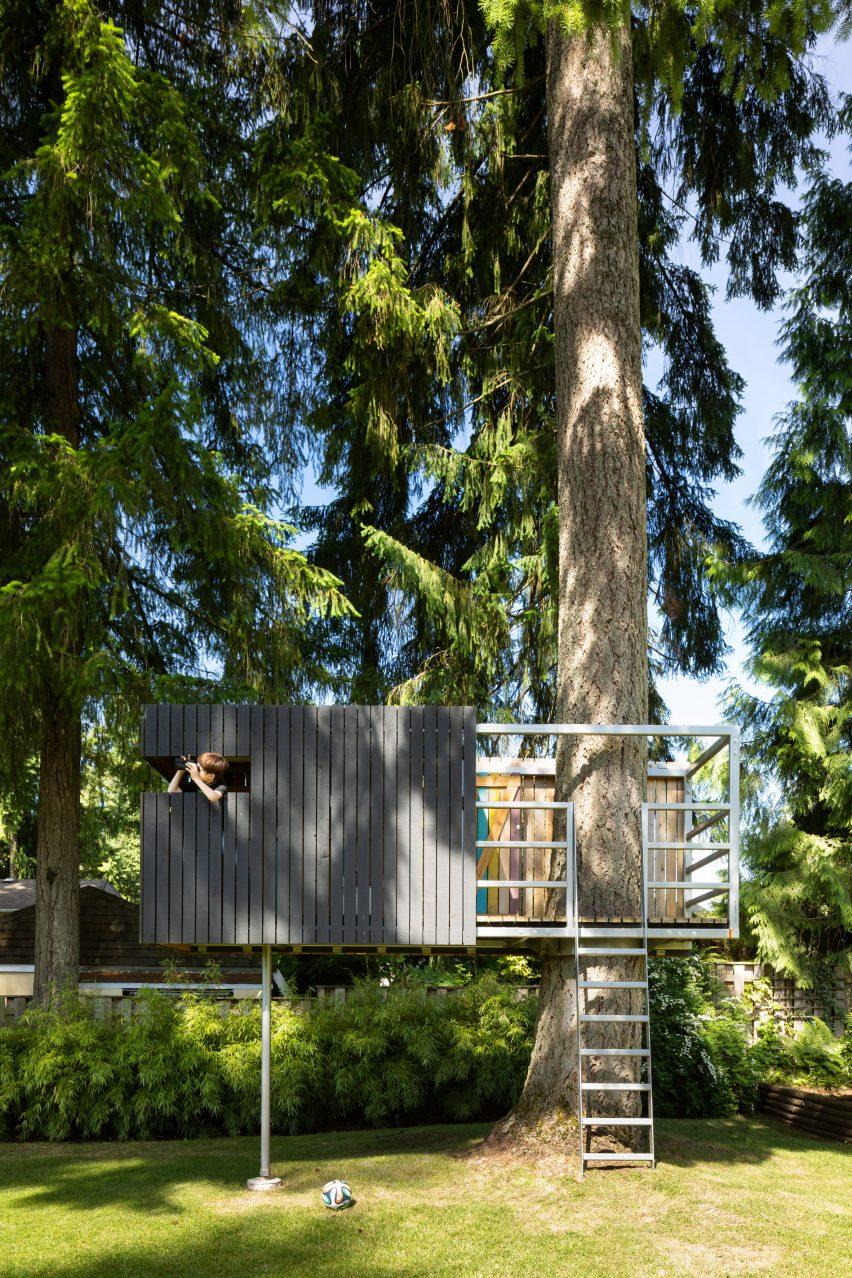 A treehouse is built around a Douglas fir tree outside