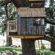 Treehouse with ladder extending to the ground