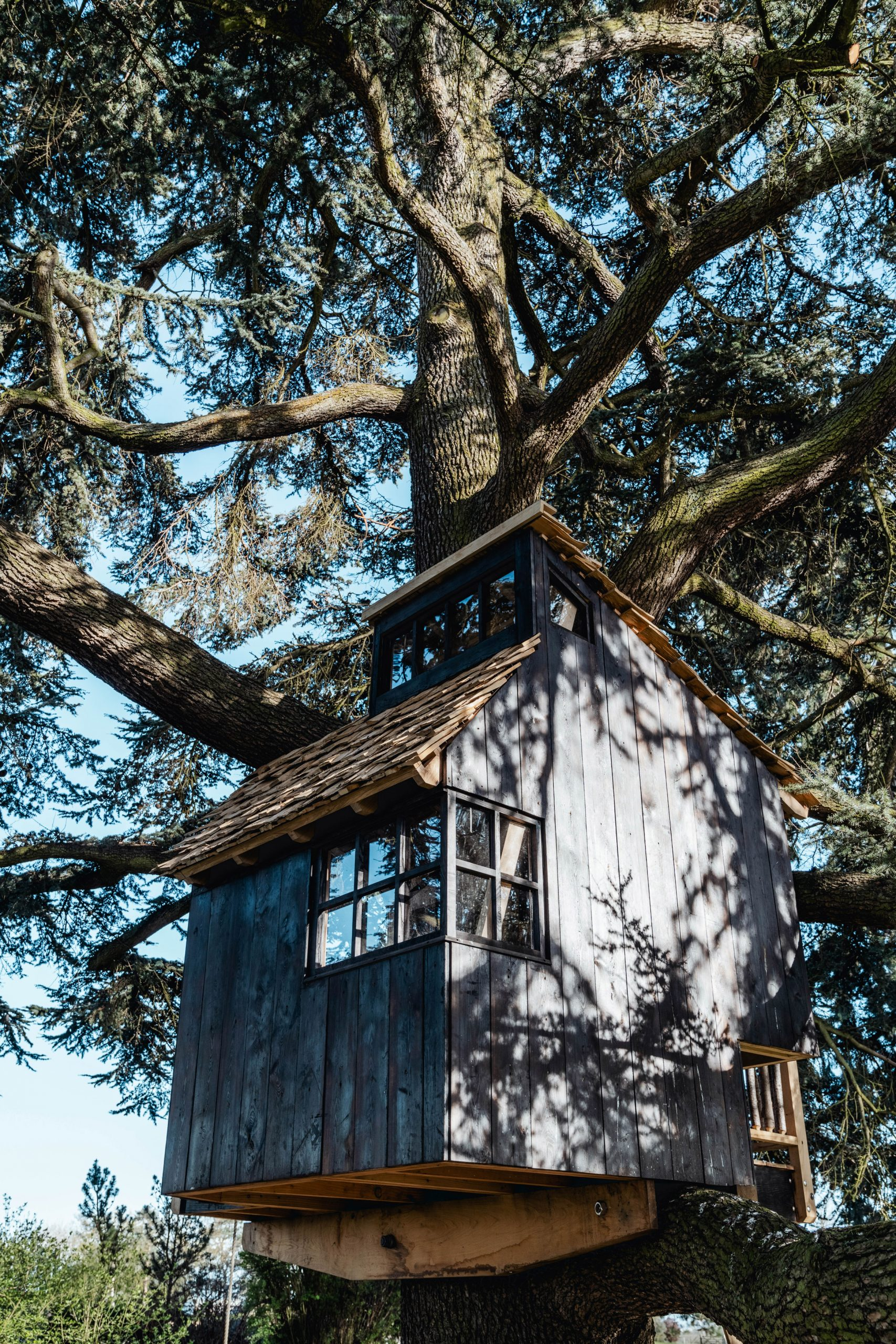 Scorched-larch treehouse on cantilevered beams