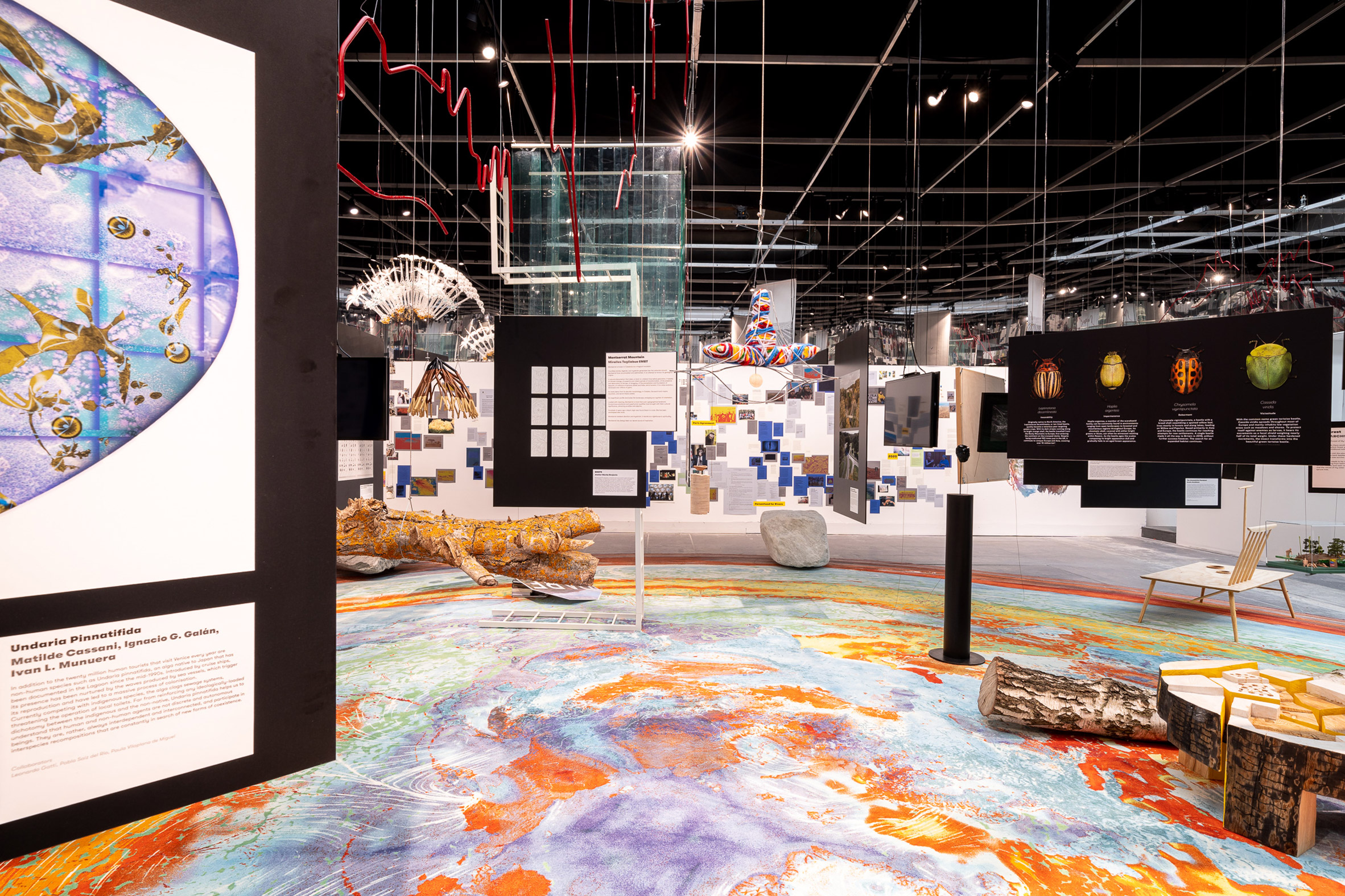 Natural entities are placed across the Future Assembly exhibition