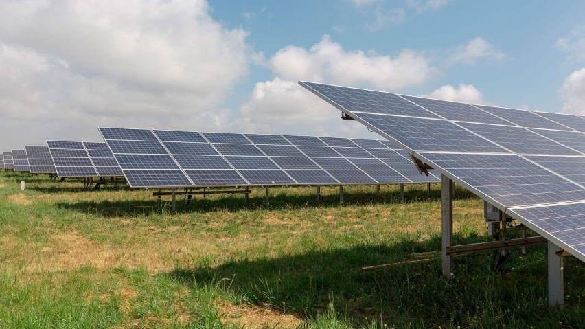 Bulb solar farm
