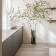 Wooden floor with green plant