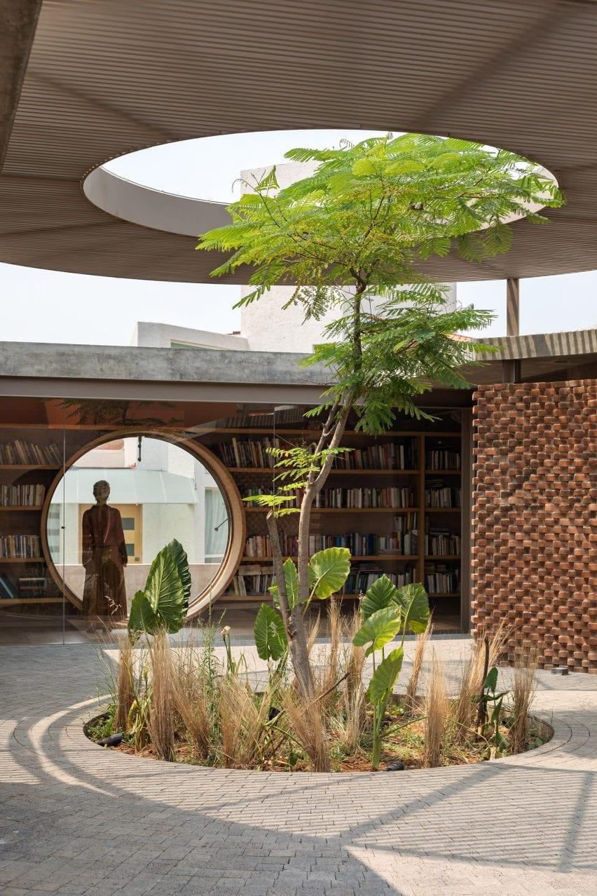 Árbol que crece a pesar del techo de Casa UC por Daniela Bucio Sistos
