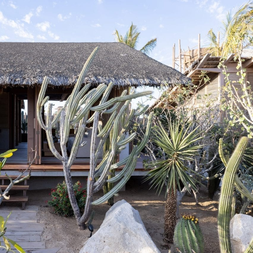 Hotel in Mexico with cactuses and thatched roof