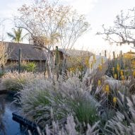 Water feature in landscape of hotel in Mexico