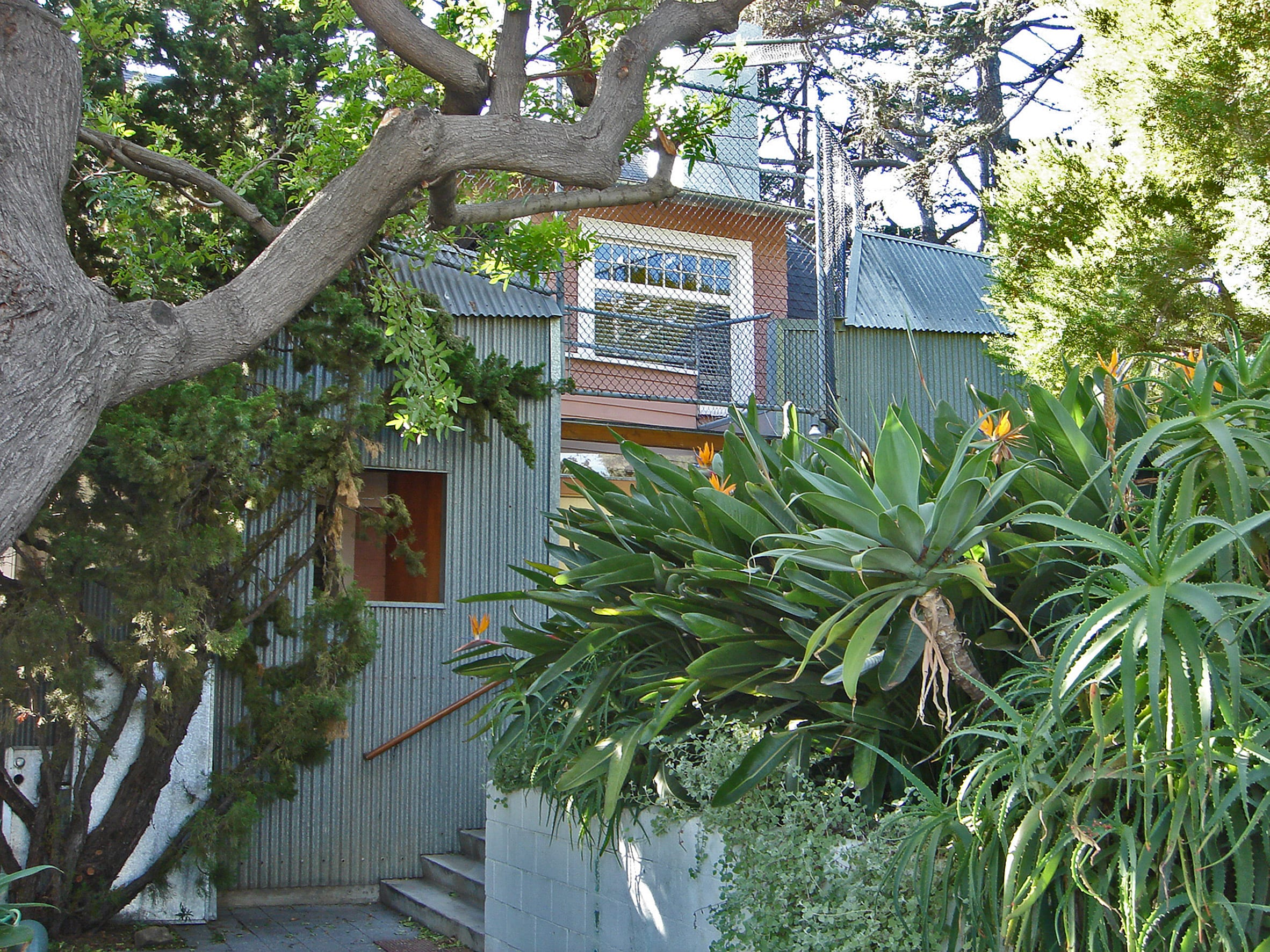 The home has corrugated galvanised steel walls