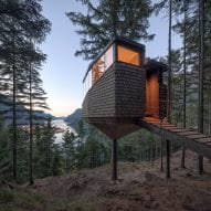 The cabin was built around a tree