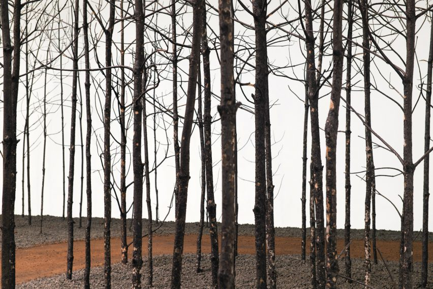 Blackened dead pine trees in installation by Superflux
