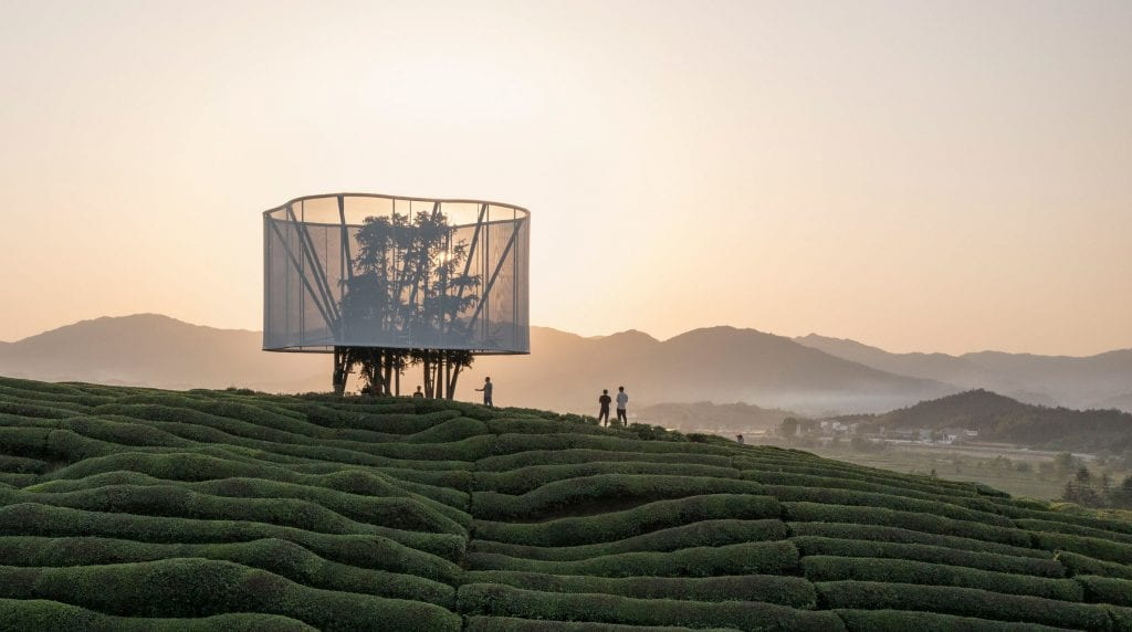 Ma Yansong creates lantern-like artwork in rural Chinese tea field
