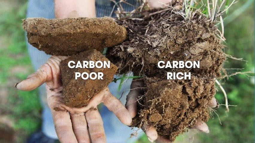 Comparison of carbon-poor and carbon-rich soil