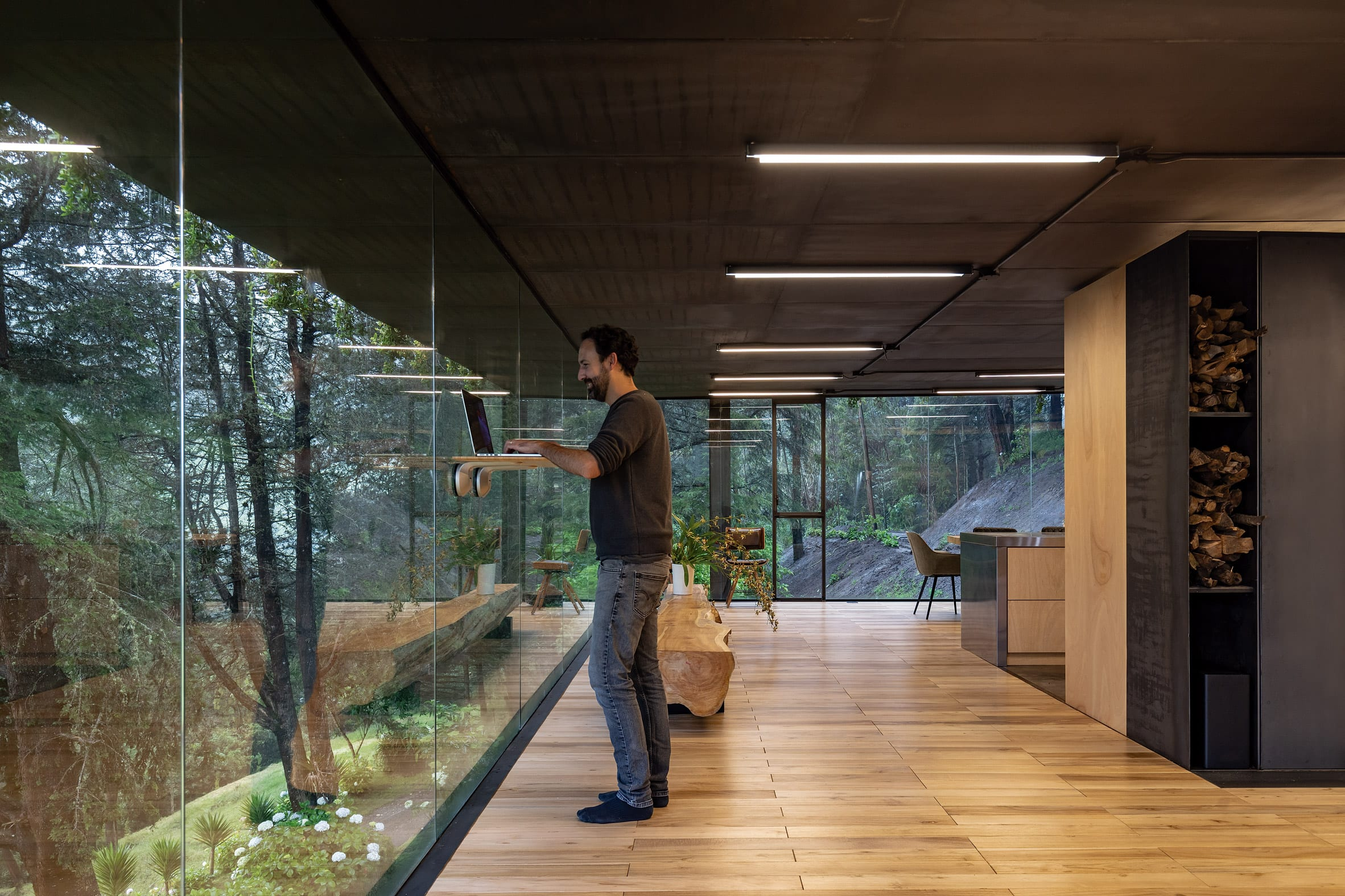 Extension with jungle views