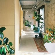 Plants and rugs fill the corridors