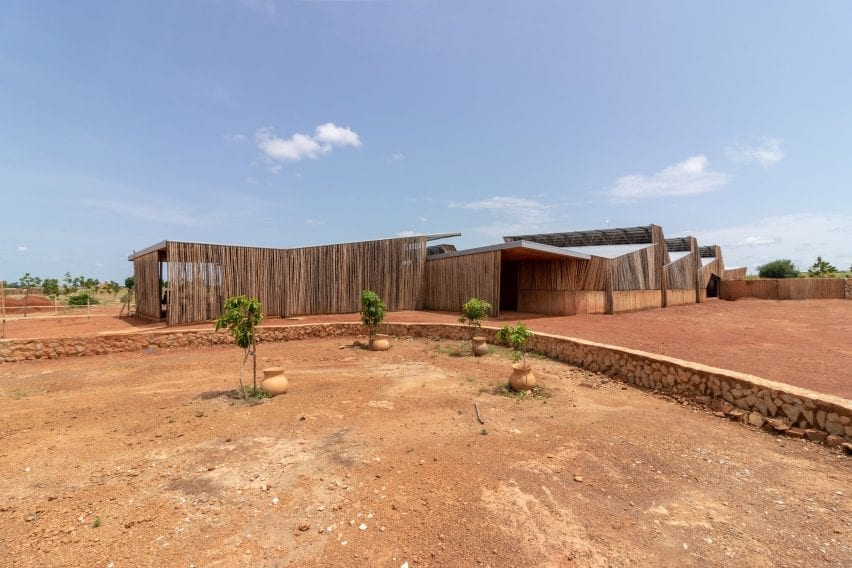 An African university lined with eucalyptus wood