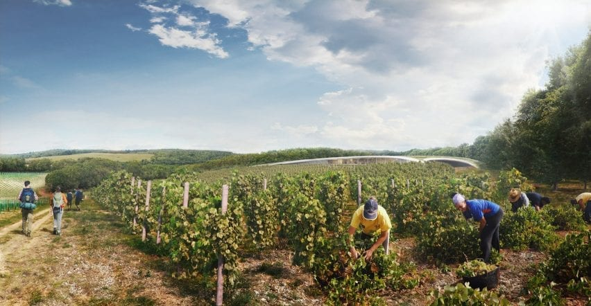 A visual of vineyards outside The Kentish Wine Vault