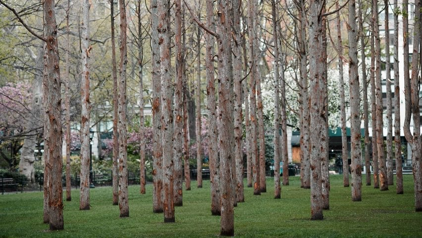 Ghost Forest in New York, USA, by Maya Lin