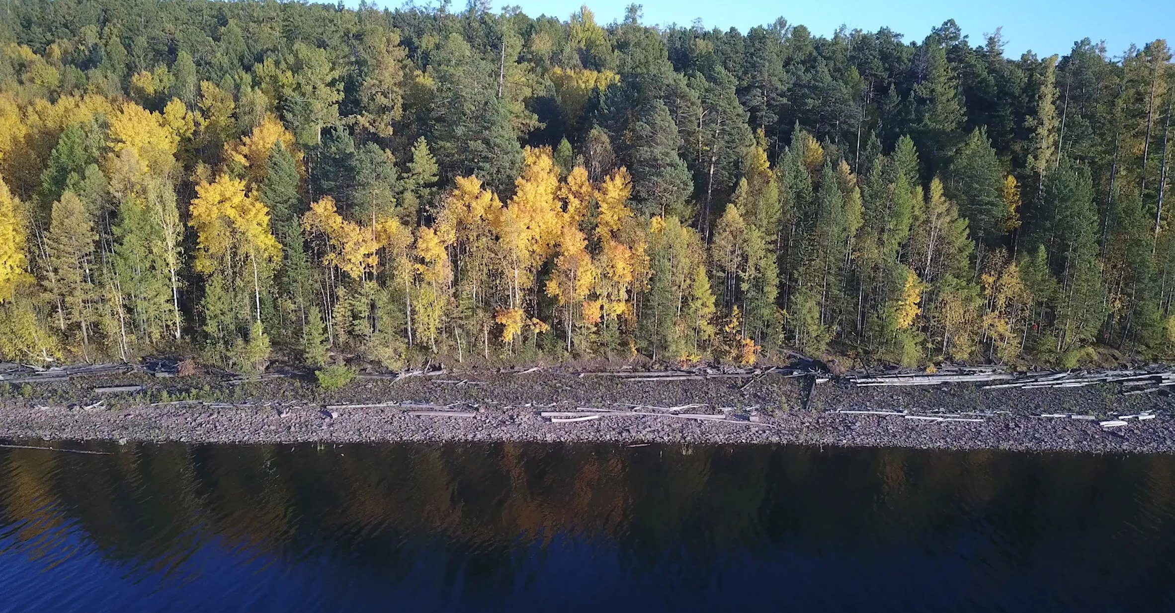 A forest in Siberian Russia next to a body of water