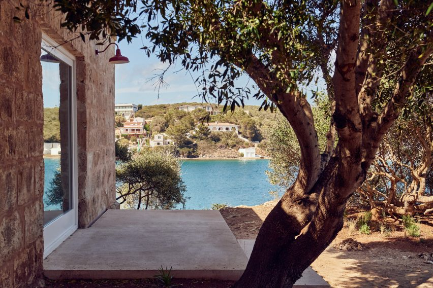 An olive tree is located beside the gallery