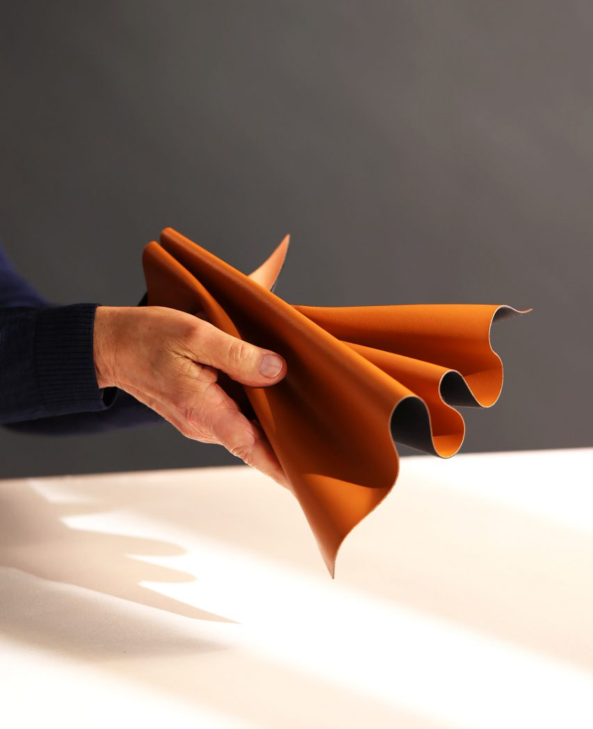 Hand holding Leap apple leather