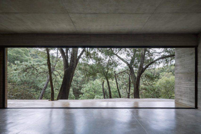 A large rectangular window frames trees