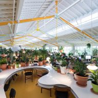 Ten verdant office interiors filled with trees and plants