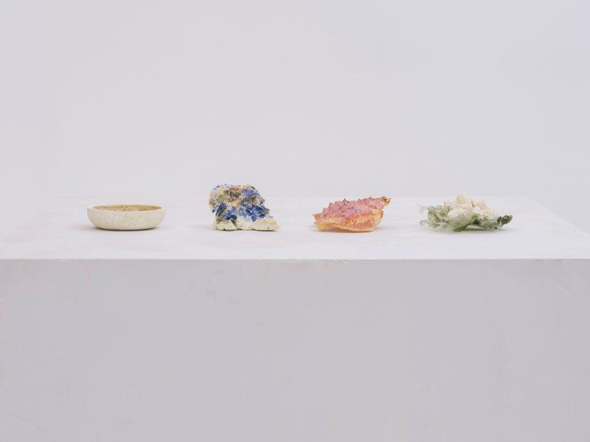 Ceramics made from seashell