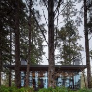 Forest House Canada Olson Kundig Glass